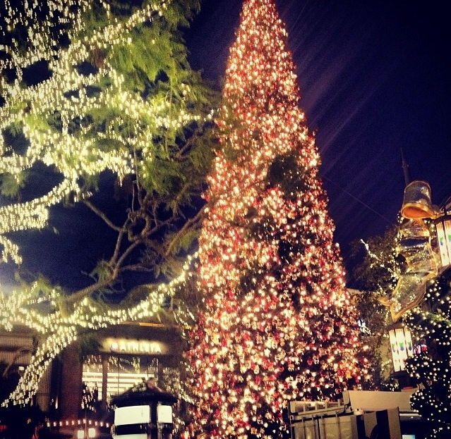 The Grove Christmas Tree!